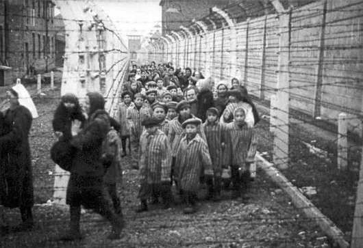 Auschwitz (1)